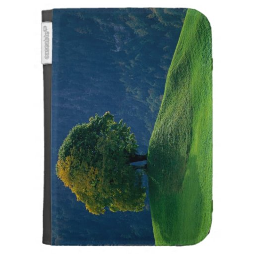 Tree on a Hill Kindle Covers
