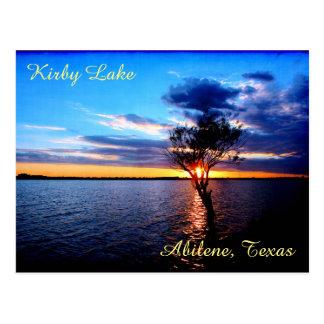 Tree On Kirby Lake Postcard