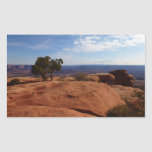 Tree Out of Red Rocks at Canyonlands National Park Rectangular Sticker