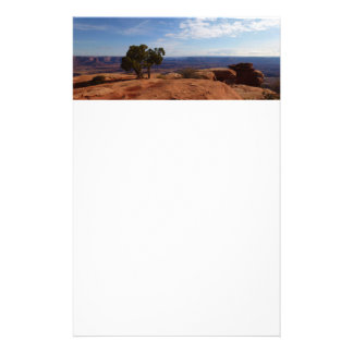 Tree Out of Red Rocks at Canyonlands National Park Stationery
