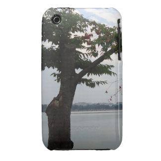 Tree Overlooking Water iPhone 3 Cover