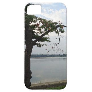 Tree Overlooking Water iPhone 5 Covers