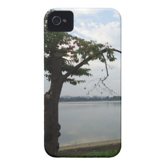 Tree Overlooking Water iPhone 4 Case-Mate Cases