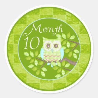 Tree Owl Milestone Month 10 Classic Round Sticker