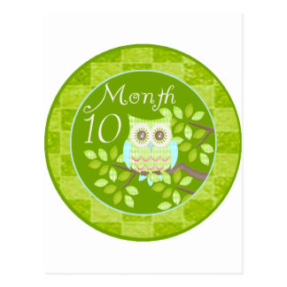 Tree Owl Milestone Month 10 Postcard