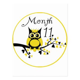 Tree Owl Milestone Month 11 Postcard