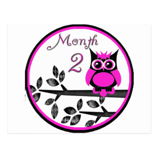 Tree Owl Milestone Month 2 Postcard