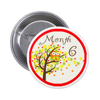 Tree Owl Milestone Month 6 Buttons
