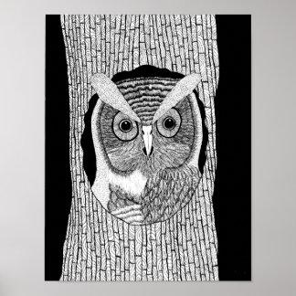 Tree Owl Poster