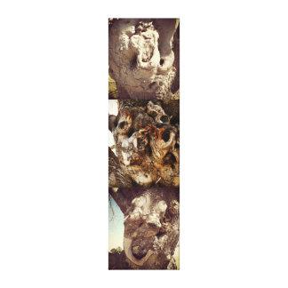 Tree Pareidolia Trilogy Canvas Print