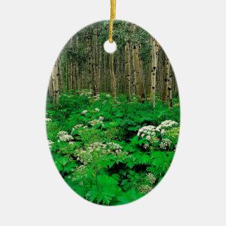 Tree Parsnip Quaking Aspen Colorado Ceramic Ornament