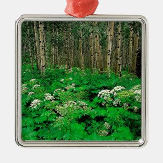 Tree Parsnip Quaking Aspen Colorado Metal Ornament