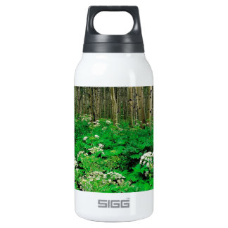 Tree Parsnip Quaking Aspen Colorado 10 Oz Insulated SIGG Thermos Water Bottle