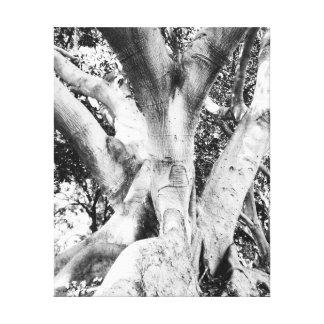 Tree Photo - Black and White Tree Monochrome Thick Canvas Print