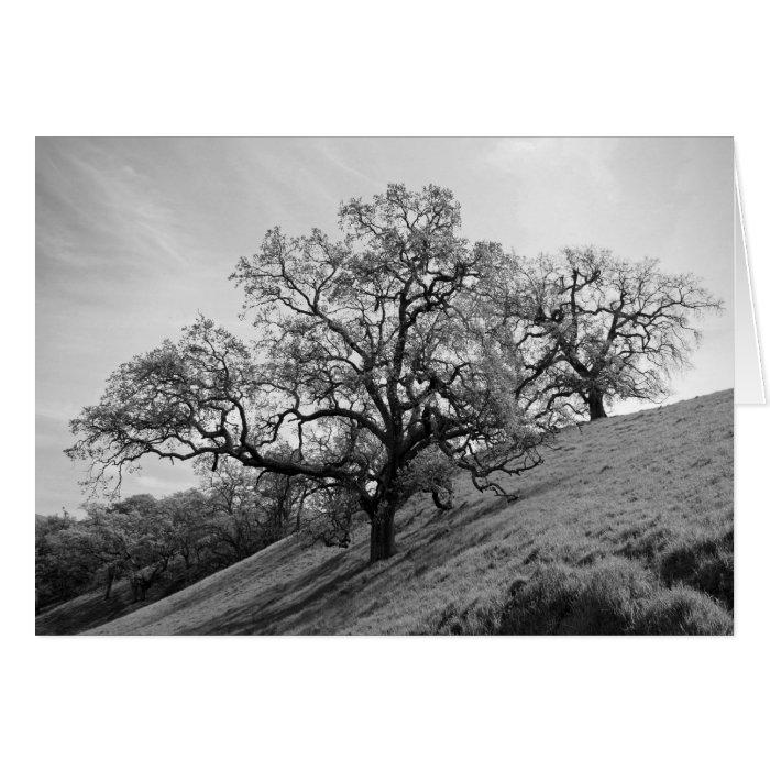 Tree Poetry Card