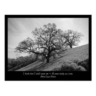 Tree Poetry Postcard