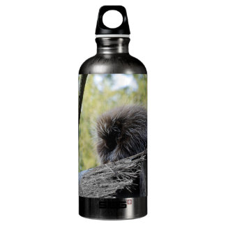 Tree Porcupine Water Bottle