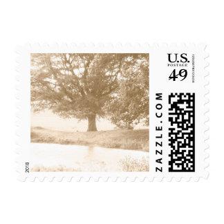 Tree Postage Stamp