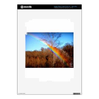 Tree Rainbow.... iPad 3 Skins