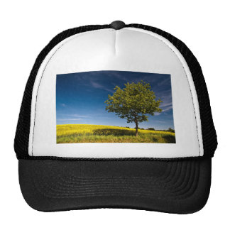 Tree, rape and blue sky / Baum, Raps und Himmel Trucker Hat