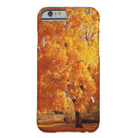 Tree Reality Autumn iPhone 6 Case