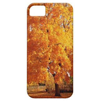 Tree Reality Autumn iPhone SE/5/5s Case