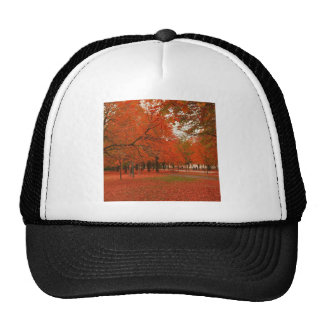 Tree Red Autumn Leaves Trucker Hat