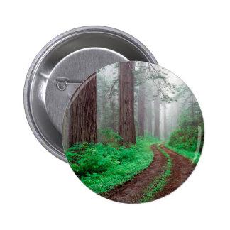 Tree Redwood California Button