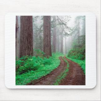 Tree Redwood California Mouse Pad