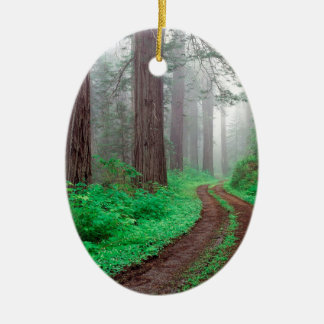 Tree Redwood California Double-Sided Oval Ceramic Christmas Ornament