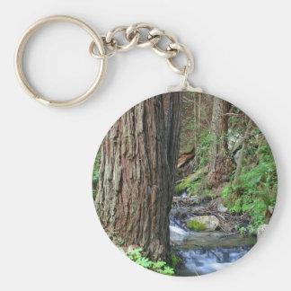 Tree Redwood Stream Basic Round Button Keychain