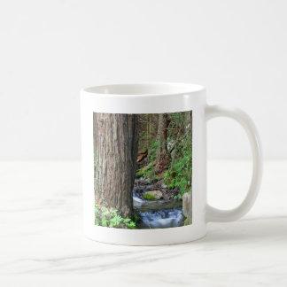 Tree Redwood Stream Coffee Mug