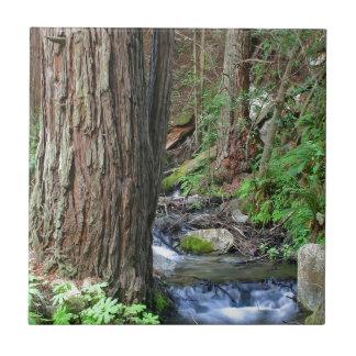 Tree Redwood Stream Tiles