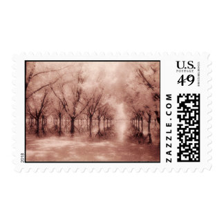 Tree Reflected in Water Stamps