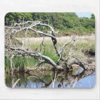 tree reflection mouse pad