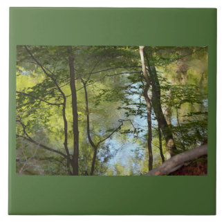 Tree Reflections Tile