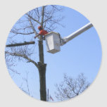 Tree Removal ~ sticker