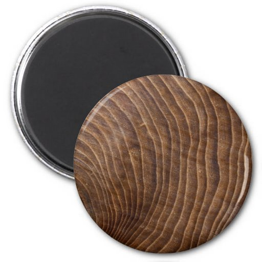 Tree rings 2 inch round magnet