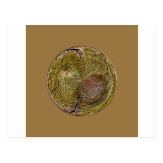 Tree Rings in a Globe in abstract Post Cards