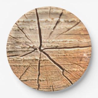 Tree Rings Paper Plate