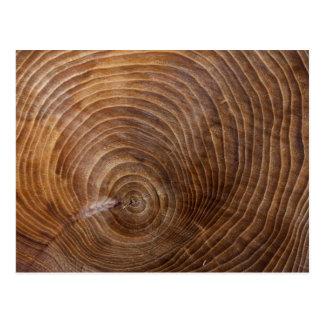 Tree rings postcard