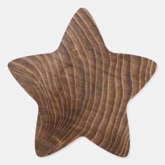 Tree rings star sticker