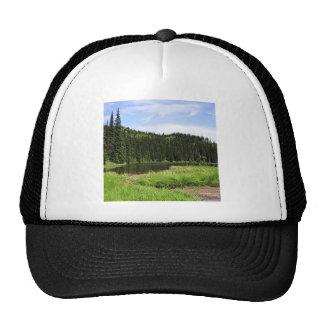 Tree River Pine Trucker Hat