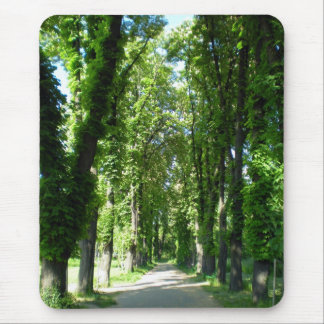 Tree road mouse pad