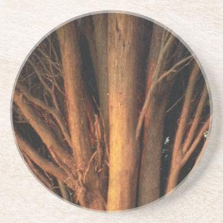 Tree Root Drink Coaster