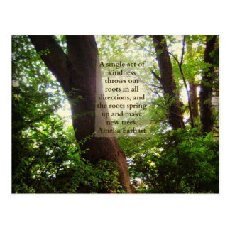 Tree Roots & Earhart Kindness Quote Postcard