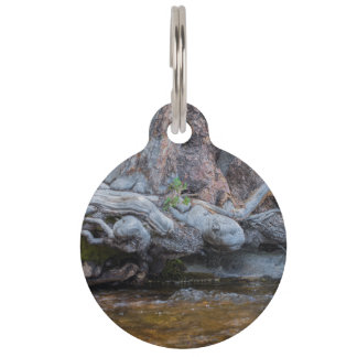 Tree Roots In The Water Stream Pet ID Tag