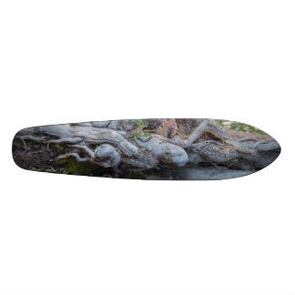 Tree Roots In The Water Stream Skateboard