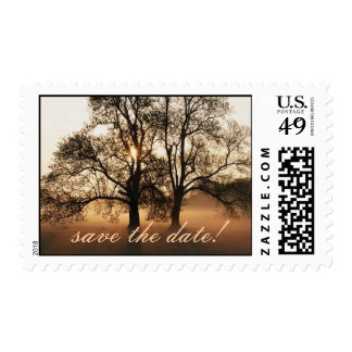 Tree, save the date! postage stamp
