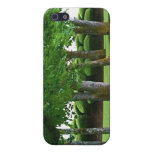 Tree Scape iPhone case Cover For iPhone 5